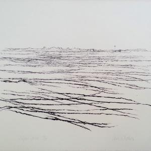 """Willem den Ouden, 1991,  """"De Waal"""" litho  40 x 50 cm"""
