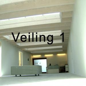 online veiling 1