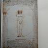 "Alicja Werbachowska, 2018, ""Vitruvian Man"" c-print,"